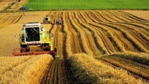 subventii-cereale