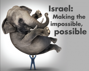 Israelul dezvolta orice idee si o transforma in succes