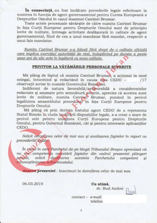 Document exclusiv QMagazine – Plangere penala Catrinel Brumar – CEDO (3)