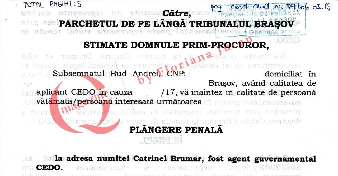 Document exclusiv QMagazine – Plangere penala Catrinel Brumar – CEDO (4)